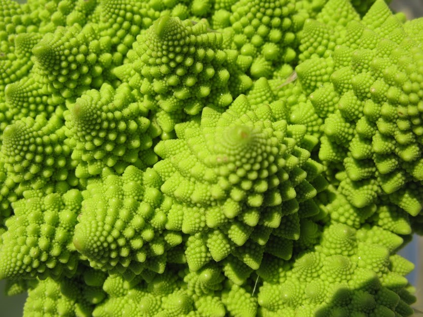 Romanesco_Broccoli_detail_-_(1)